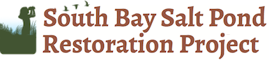 South Bay Salt Pond Restoration Project title banner