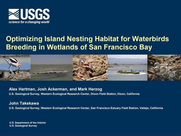 Optimizing Island Nesting Habitat for Waterbirds Breeding in Wetlands of San Francisco Bay - first slide