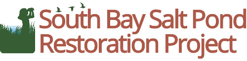 South Bay Salt Pond Restoration Project